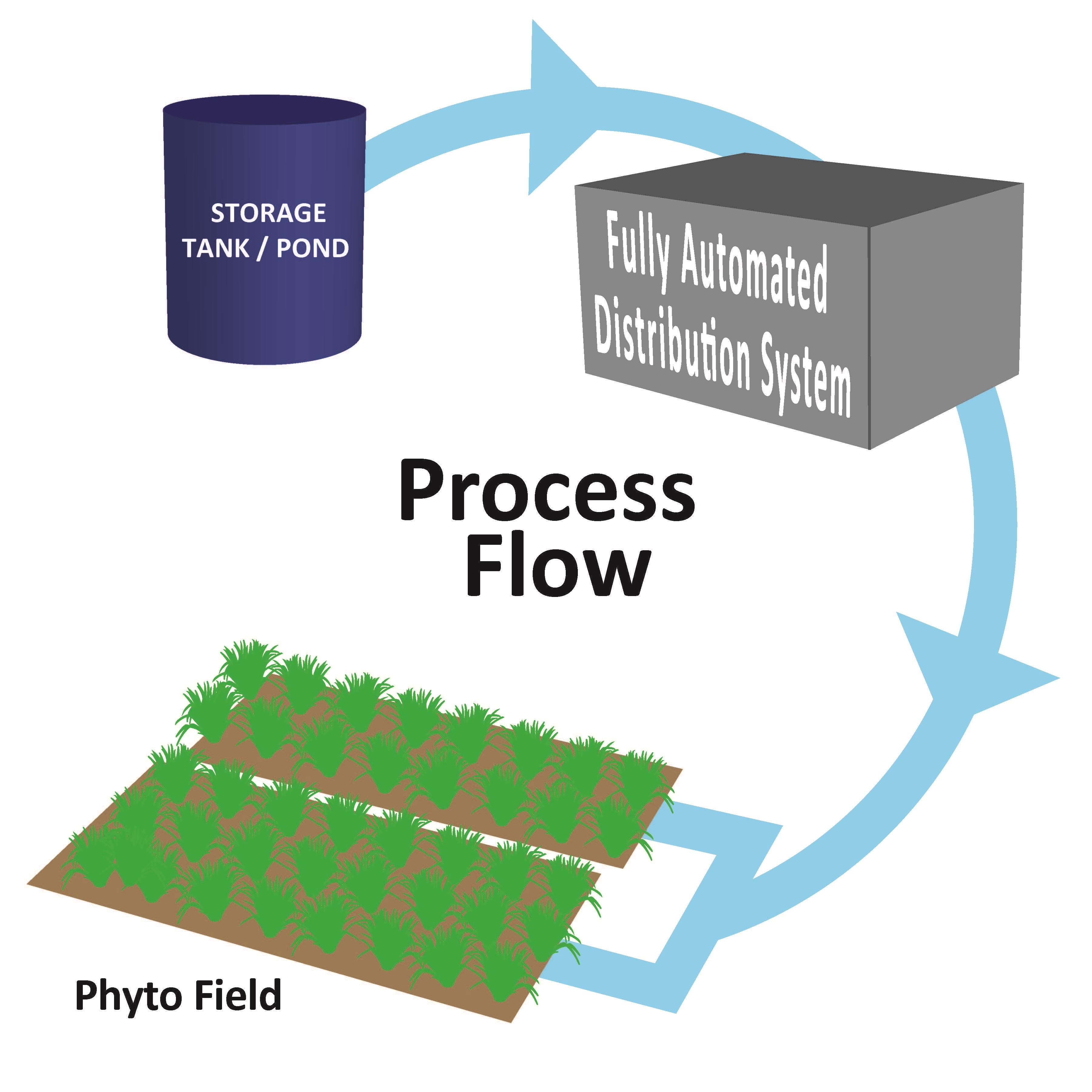 Phyto Flow Diagram